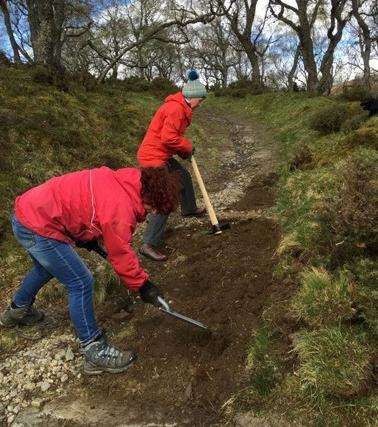 Path maintenance in braemar